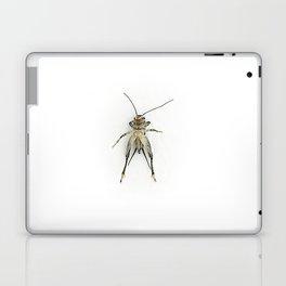 Bug Chill Laptop & iPad Skin