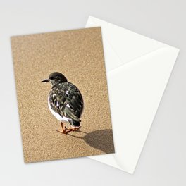Sandpiper Bird Seashore Portrait Stationery Cards
