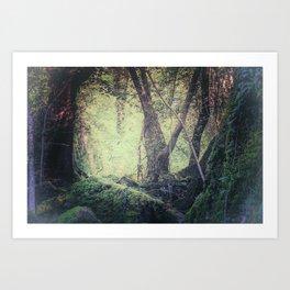 "Fairy-tale wood"" Art Print"