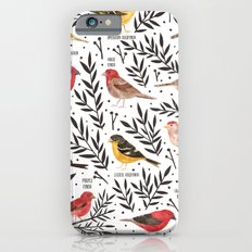 Finches of North American Field Guide iPhone 6s Slim Case