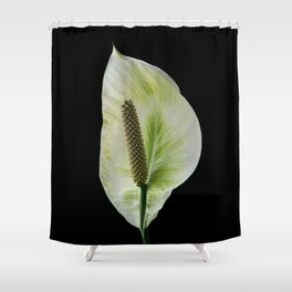 Peace Lily on Black #1 #floral #decor #art #society6 Shower Curtain