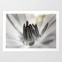 With Time (Black and White) Art Print