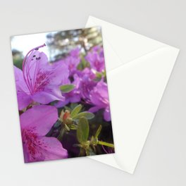 Flower Close Up Stationery Cards