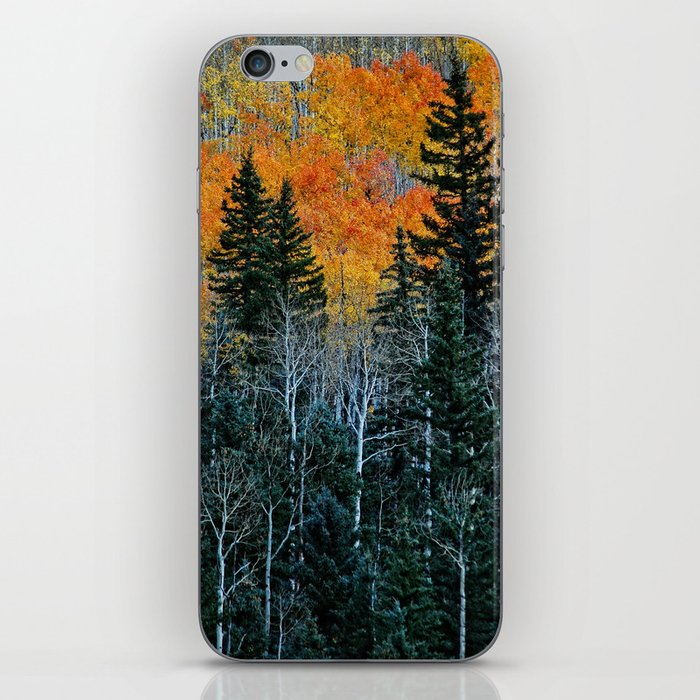 Autumn Forest iPhone Skin