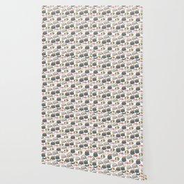Sushi Cats Wallpaper
