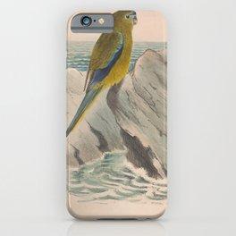 Vintage Print - The Birds of Australia (1910) - Western Rock Parrot iPhone Case