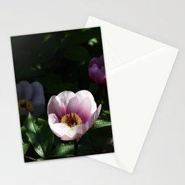 Invitation for Meditation Stationery Cards