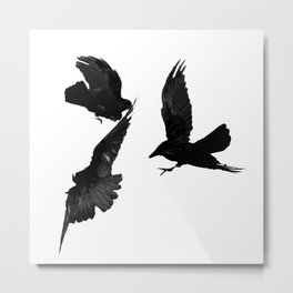 A Trio of Crows Metal Print