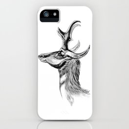 Ernst Haeckel's Antilopinae iPhone Case