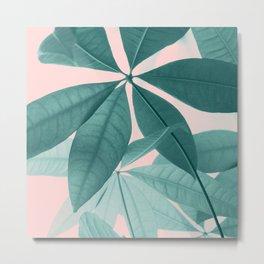 Pachira Aquatica #5 #foliage #decor #art #society6 Metal Print