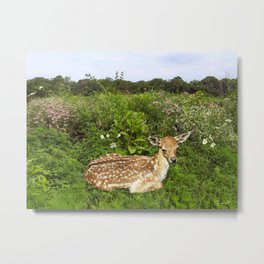 Fawn and Wildflowers Metal Print