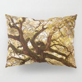 Angel Oak 5 Pillow Sham
