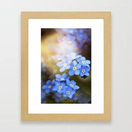 Don't Forget Me no.3863 Framed Art Print