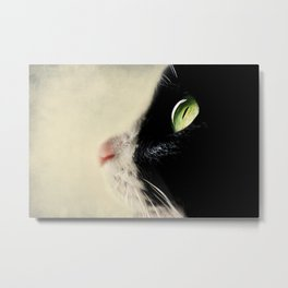 cat IV Metal Print