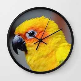 Vibrant Package Wall Clock