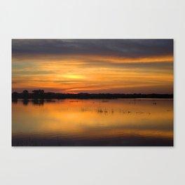 Big Marsh Canvas Print