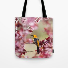 Oriole in Plum Tree Tote Bag