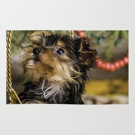 Tiny Yorkie Puppy in a Gold Star Basket underneath a Christmas Tree Rug