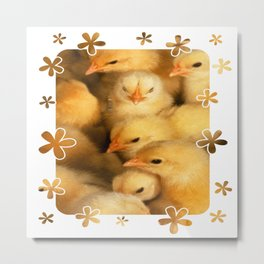 Clutch of Yellow Fluffy Chicks With Decorative Border Metal Print