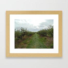 Lewin Farms 1 Framed Art Print