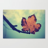 leaf Canvas Prints featuring Leaf! by Enkel Dika