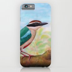Fairy Pitta Slim Case iPhone 6s