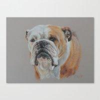 english bulldog Canvas Prints featuring ENGLISH BULLDOG by Canisart
