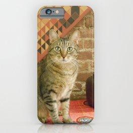 House Cat iPhone Case