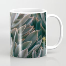 Graptoveria Study #3 Coffee Mug
