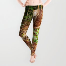 A firm grip on mother earth Leggings