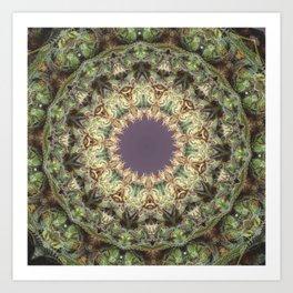 Calyx Eyes Art Print