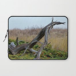 Coastal Driftwood Laptop Sleeve