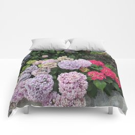 Budva Hydrangeas Comforters
