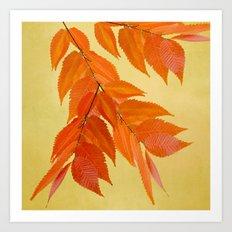 Fall mood Art Print