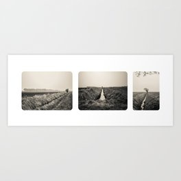 B&W Landscape Triptych  Art Print