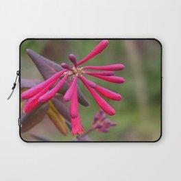 Trumpet Honeysuckle - Buds of Coral Woodbine  Laptop Sleeve