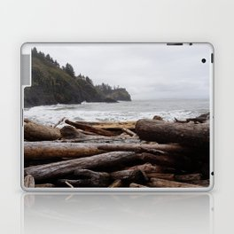 Cape Disappointment Laptop & iPad Skin