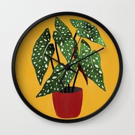 Begonia maculata pot watercolor Wall Clock