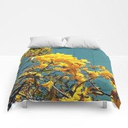 Spring Westwood Comforters