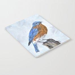 Bluebird Art Notebook