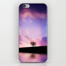 The sunset tree iPhone & iPod Skin