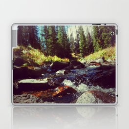 Walk on Water Laptop & iPad Skin