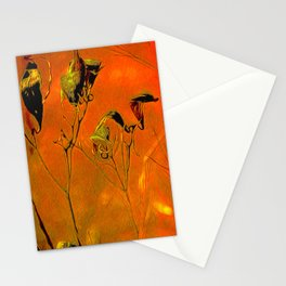 Dry Pods Stationery Cards