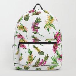 Australian Native Flower Bottlebrush Print Backpack