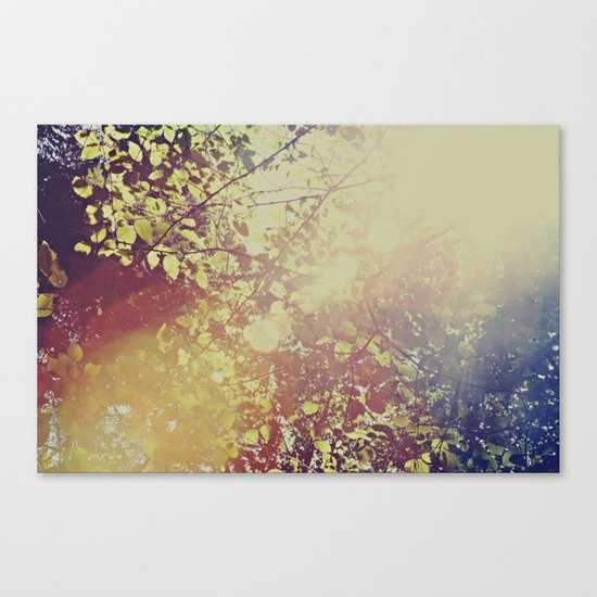 Afternoon Leaves Canvas Print