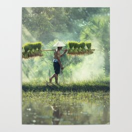 Indonesian Farmer Planting Rice Crop Poster