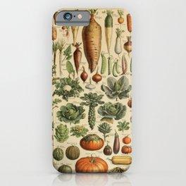 Vegetable Chart iPhone Case