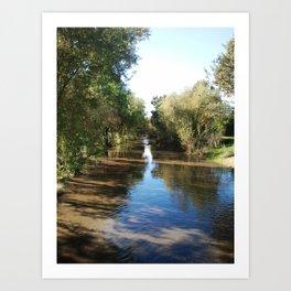 Copeland Creek 2 2012-11-28 Art Print