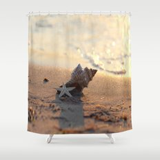 Shell on the sea Shower Curtain