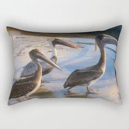 Three Begging Pelicans Rectangular Pillow
